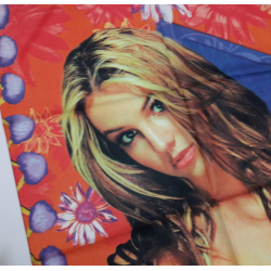 """Britney Spears """"Oops""""..."""