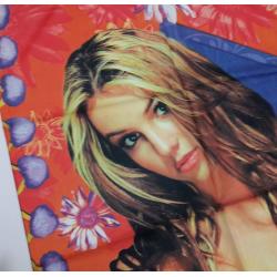 """Drapeau Britney Spears """"Oops"""""""